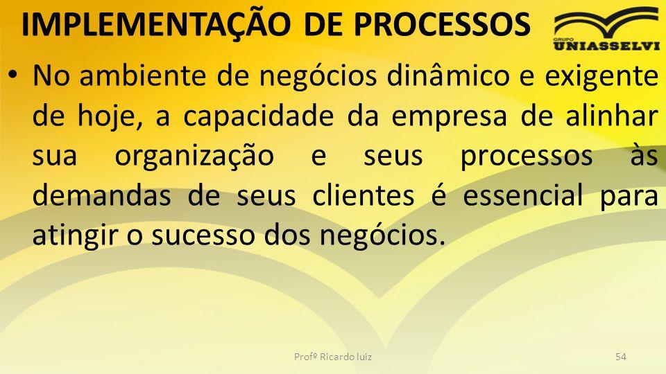 IMPLEMENTAÇÃO DE PROCESSOS No ambiente de negócios dinâmico e exigente de hoje, a capacidade da empresa de alinhar sua organização e seus processos às