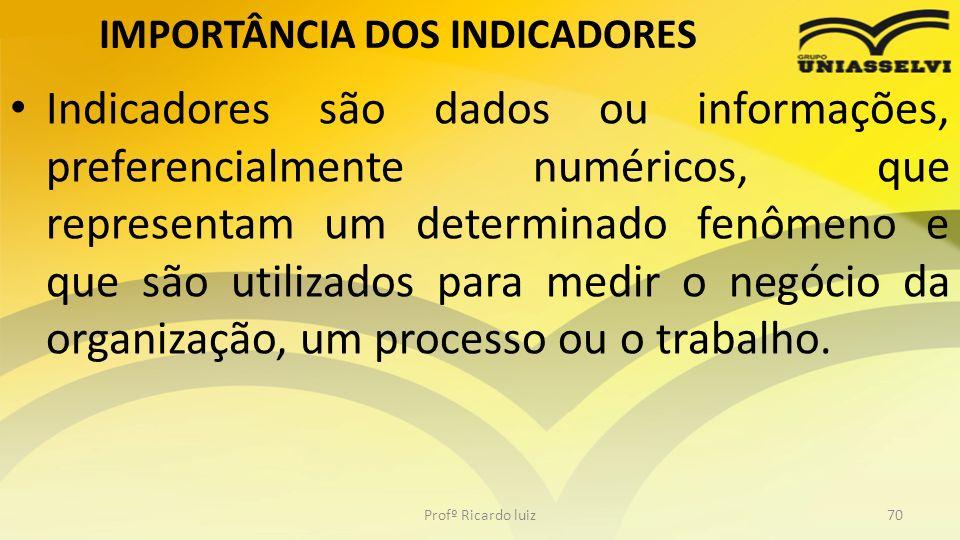 IMPORTÂNCIA DOS INDICADORES Indicadores são dados ou informações, preferencialmente numéricos, que representam um determinado fenômeno e que são utili