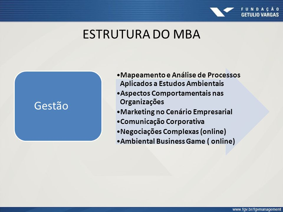 ESTRUTURA DO MBA Mapeamento e Análise de Processos Aplicados a Estudos Ambientais Aspectos Comportamentais nas Organizações Marketing no Cenário Empre