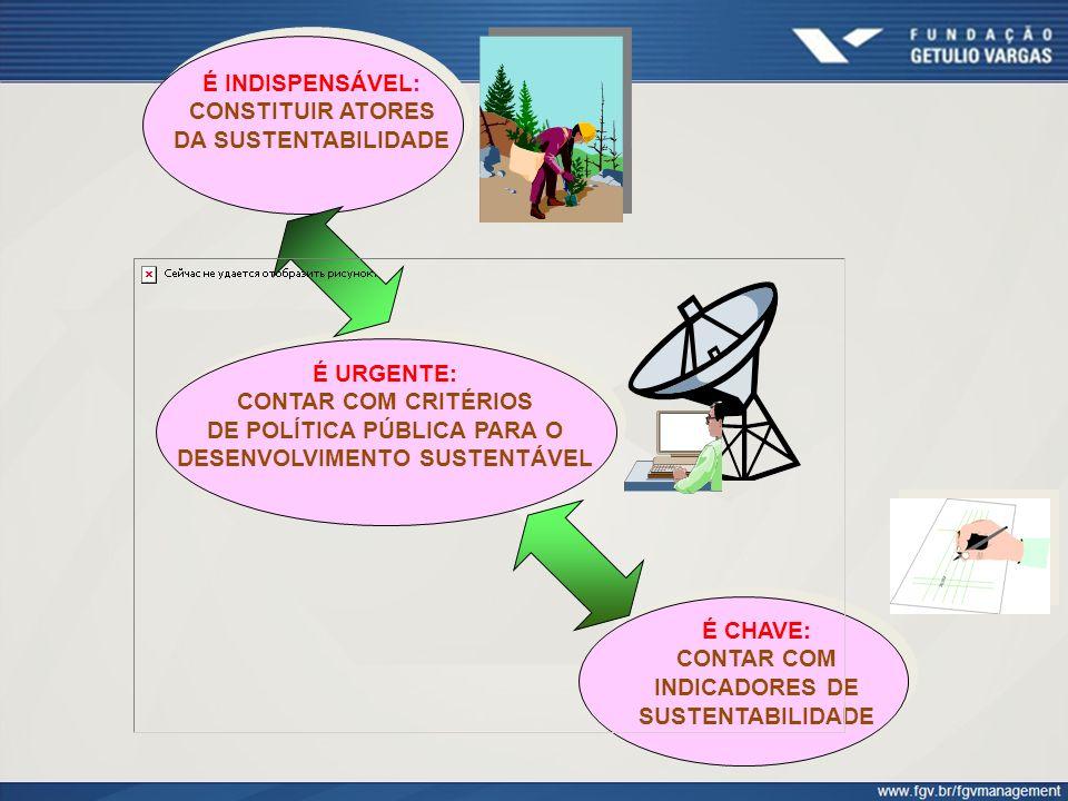 PIRÂMIDE DA RESPONSABILIDADE SOCIAL Fonte: Denise Xavier Nunes, O Balanço Social como Estratégia de Fortalecimento das Práticas de Responsabilidade Social, Fonte: Denise Xavier Nunes, O Balanço Social como Estratégia de Fortalecimento das Práticas de Responsabilidade Social, Dissertação de Mestrado, EBAPE/FGV, 2008