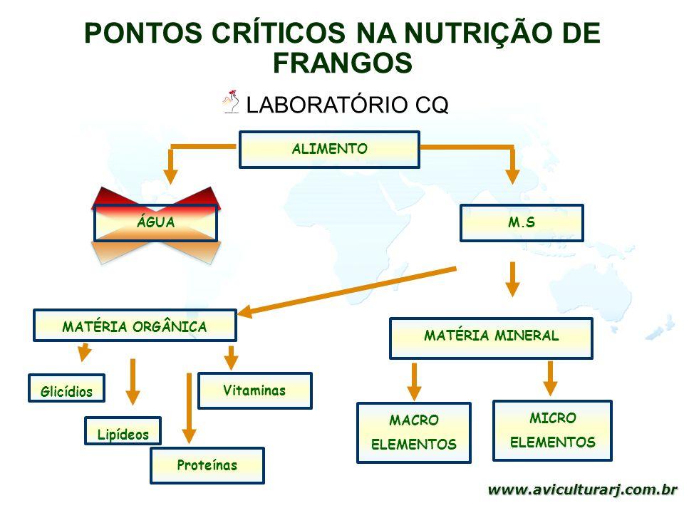 12 www.aviculturarj.com.br PONTOS CRÍTICOS NA NUTRIÇÃO DE FRANGOS ALIMENTO ÁGUAM.S MATÉRIA ORGÂNICA MATÉRIA MINERAL Glicídios Lipídeos Proteínas Vitam