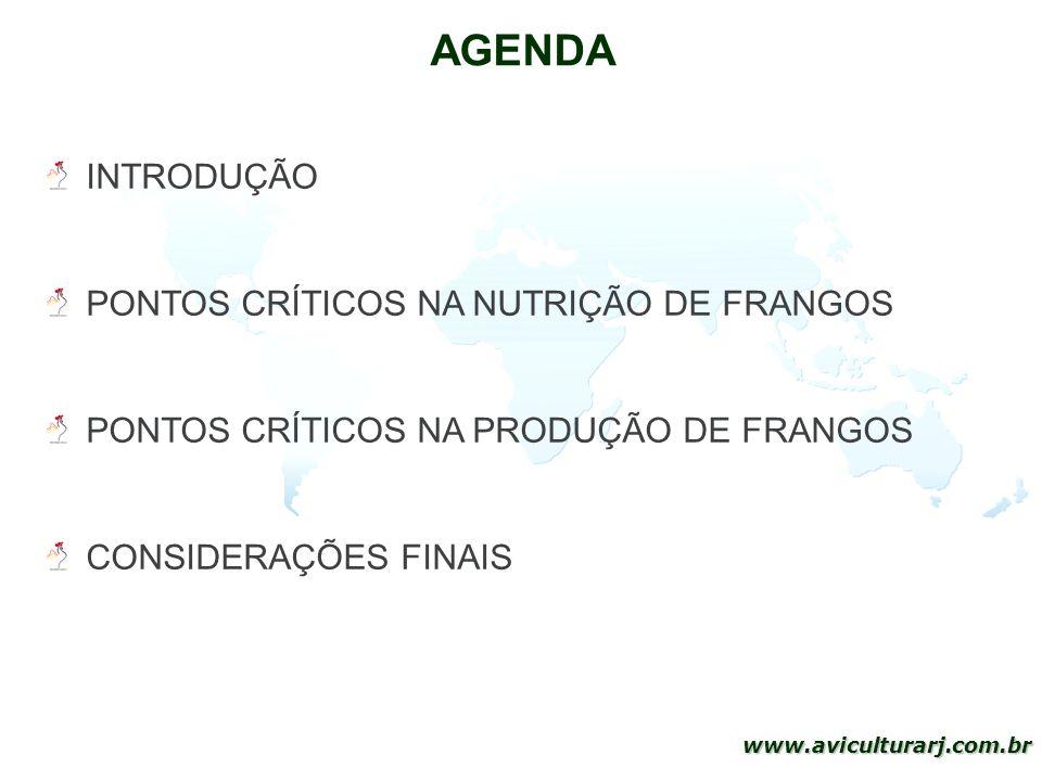 2 www.aviculturarj.com.br AGENDA INTRODUÇÃO PONTOS CRÍTICOS NA NUTRIÇÃO DE FRANGOS PONTOS CRÍTICOS NA PRODUÇÃO DE FRANGOS CONSIDERAÇÕES FINAIS