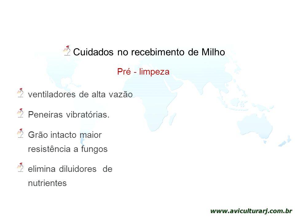 20 www.aviculturarj.com.br Cuidados no recebimento de Milho Pré - limpeza ventiladores de alta vazão Peneiras vibratórias. Grão intacto maior resistên
