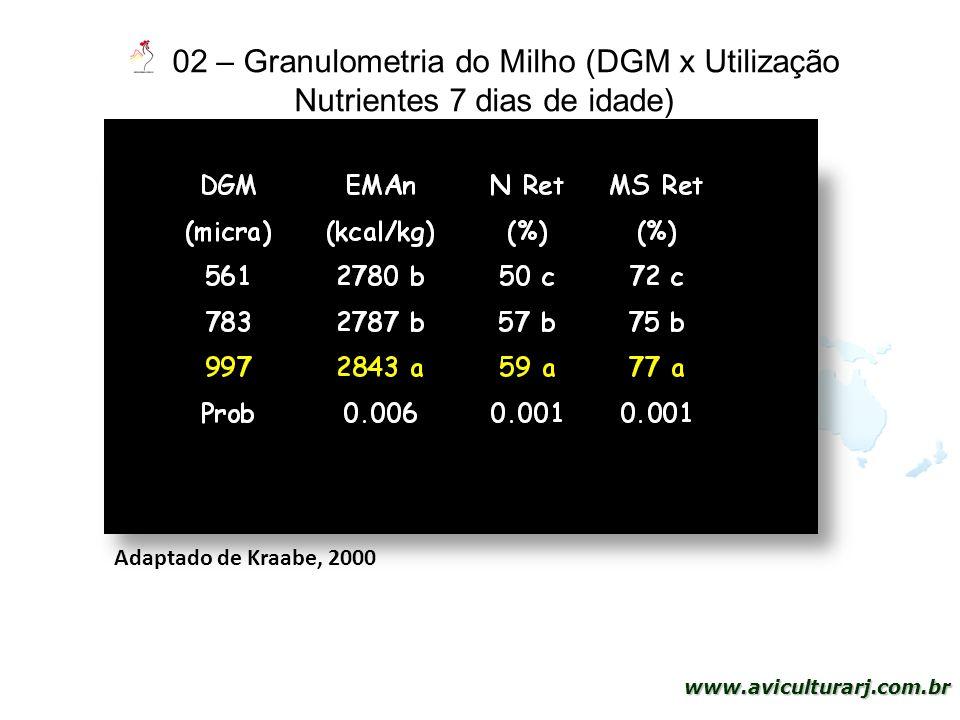 27 www.aviculturarj.com.br 02 – Granulometria do Milho (DGM x Utilização Nutrientes 7 dias de idade) Adaptado de Kraabe, 2000