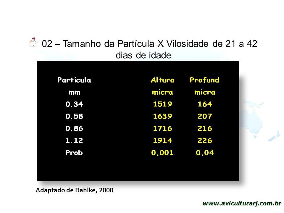 28 www.aviculturarj.com.br 02 – Tamanho da Partícula X Vilosidade de 21 a 42 dias de idade Adaptado de Dahlke, 2000