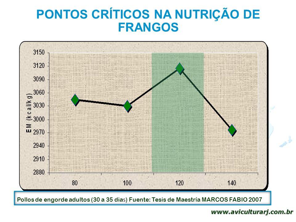 38 www.aviculturarj.com.br PONTOS CRÍTICOS NA NUTRIÇÃO DE FRANGOS Pollos de engorde adultos (30 a 35 dia s ) Fuente: Tesis de Maestría MARCOS FABIO 20