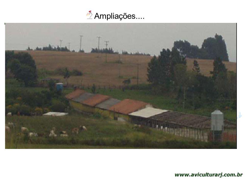 43 www.aviculturarj.com.br Ampliações....
