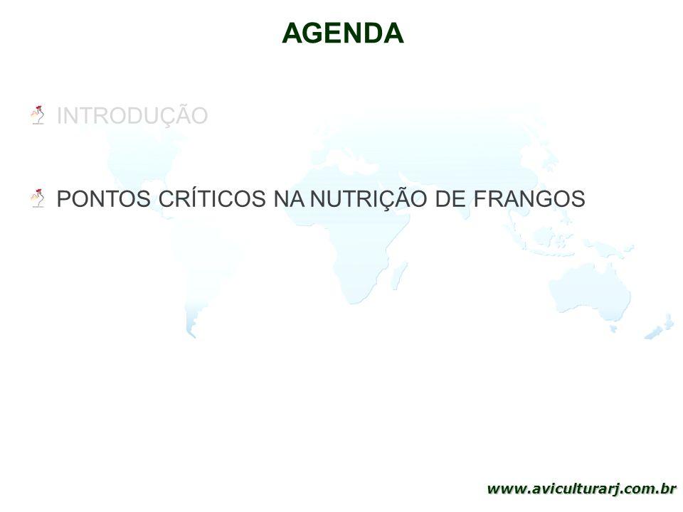 39 www.aviculturarj.com.br AGENDA INTRODUÇÃO PONTOS CRÍTICOS NA NUTRIÇÃO DE FRANGOS PONTOS CRÍTICOS DA PRODUÇÃO DE FRANGOS