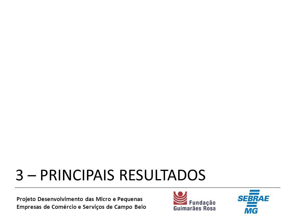 3 – PRINCIPAIS RESULTADOS Projeto Desenvolvimento das Micro e Pequenas Empresas de Comércio e Serviços de Campo Belo