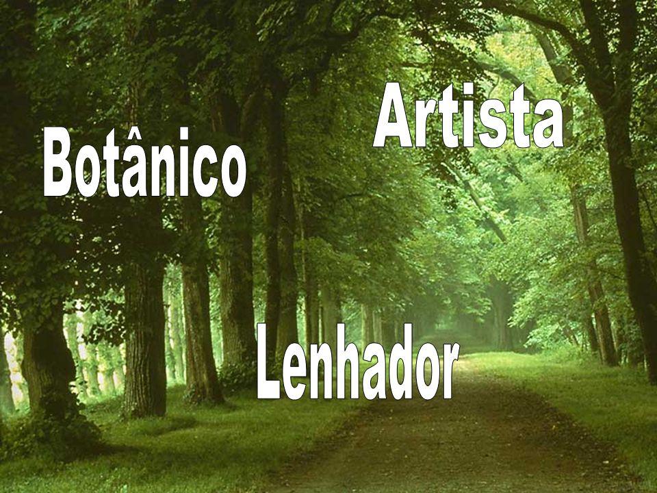 Duração: 16 horas/aula (2x8h ou 4x4h) Local: PoteNciaL Instituto de Programação Neurolinguística - Rua Souza Bastos,165 - Floresta Instrutora: Msc.