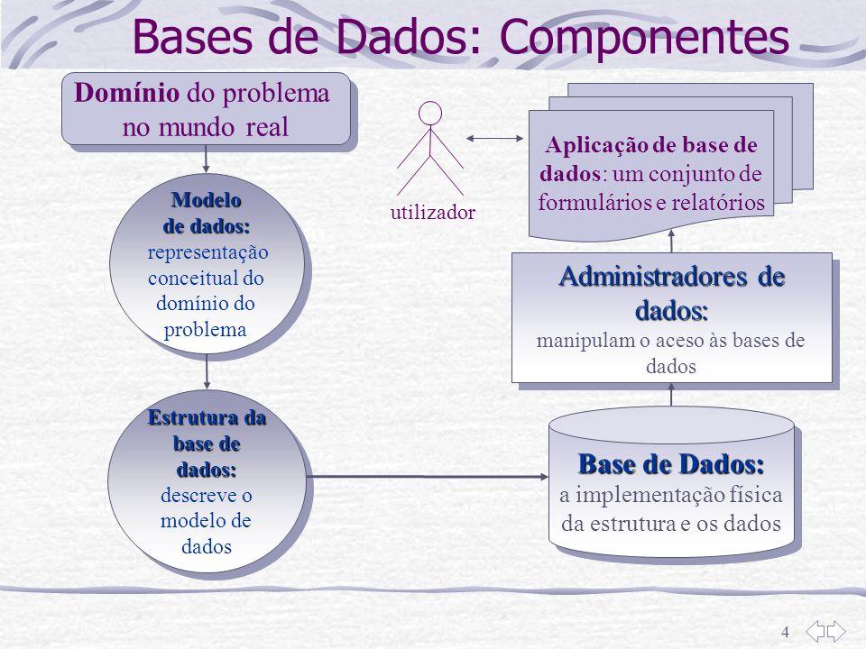 4 Bases de Dados: Componentes Domínio Domínio do problema no mundo real Modelo de dados: Modelo de dados: representação conceitual do domínio do probl
