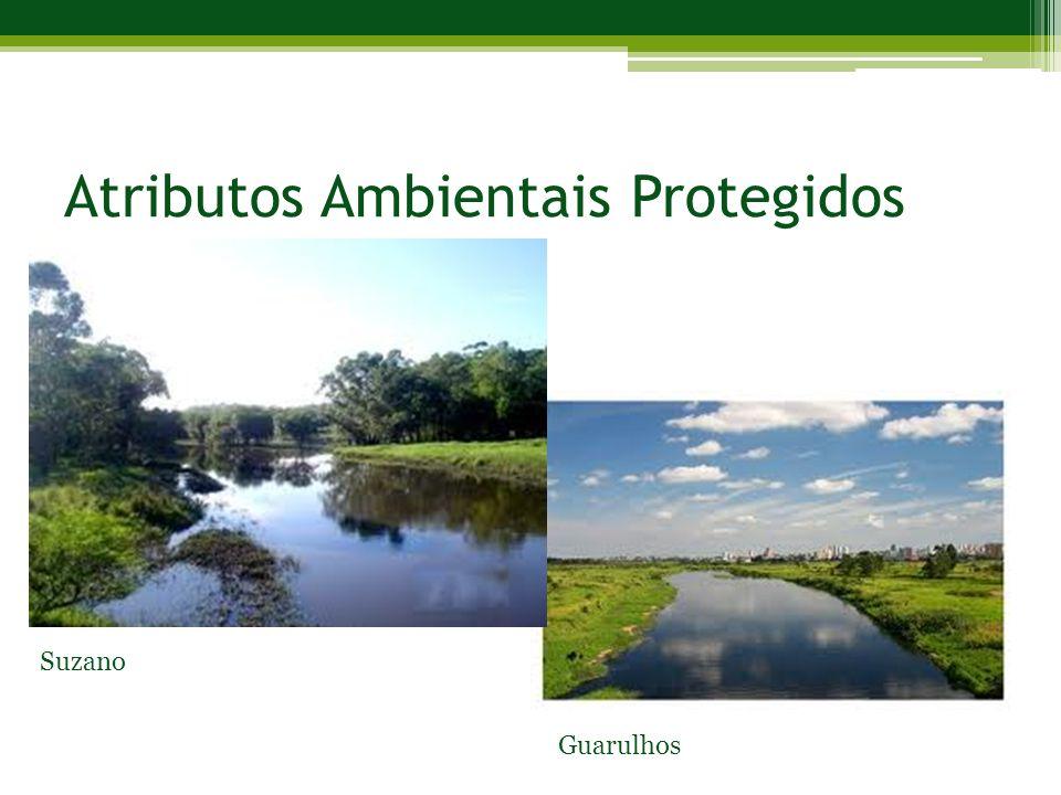 Atributos Ambientais Protegidos Guarulhos Suzano