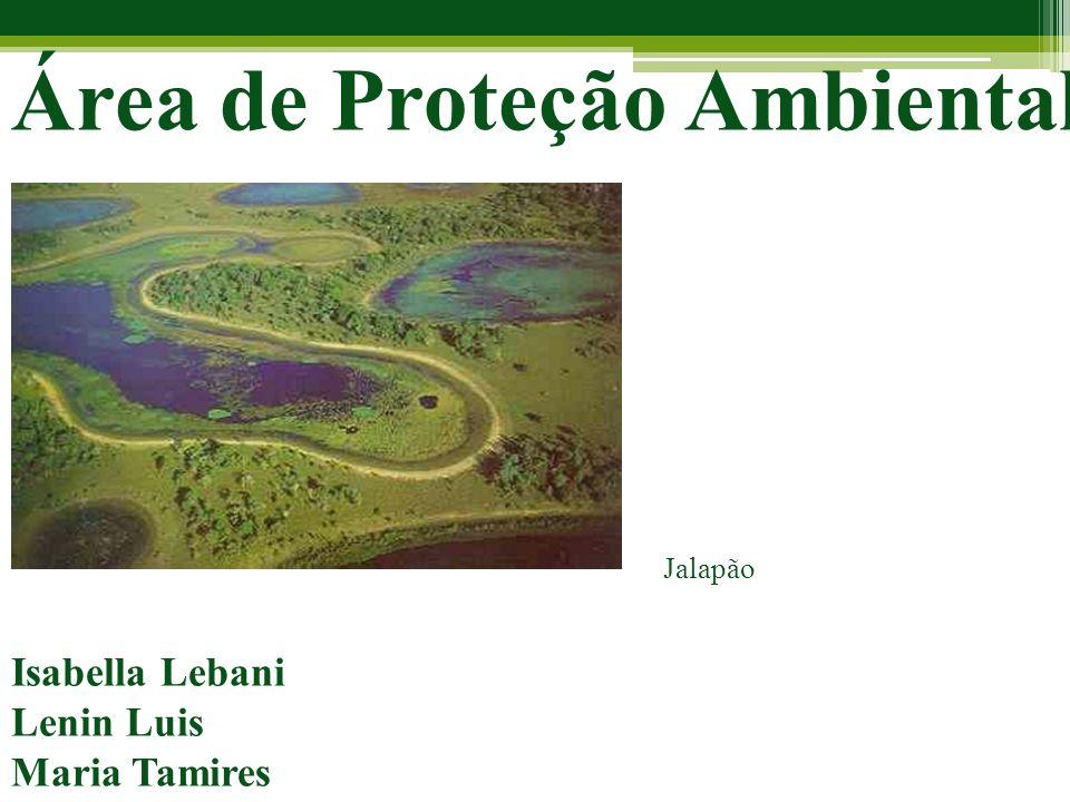 Área de Proteção Ambiental Isabella Lebani Lenin Luis Maria Tamires Jalapão