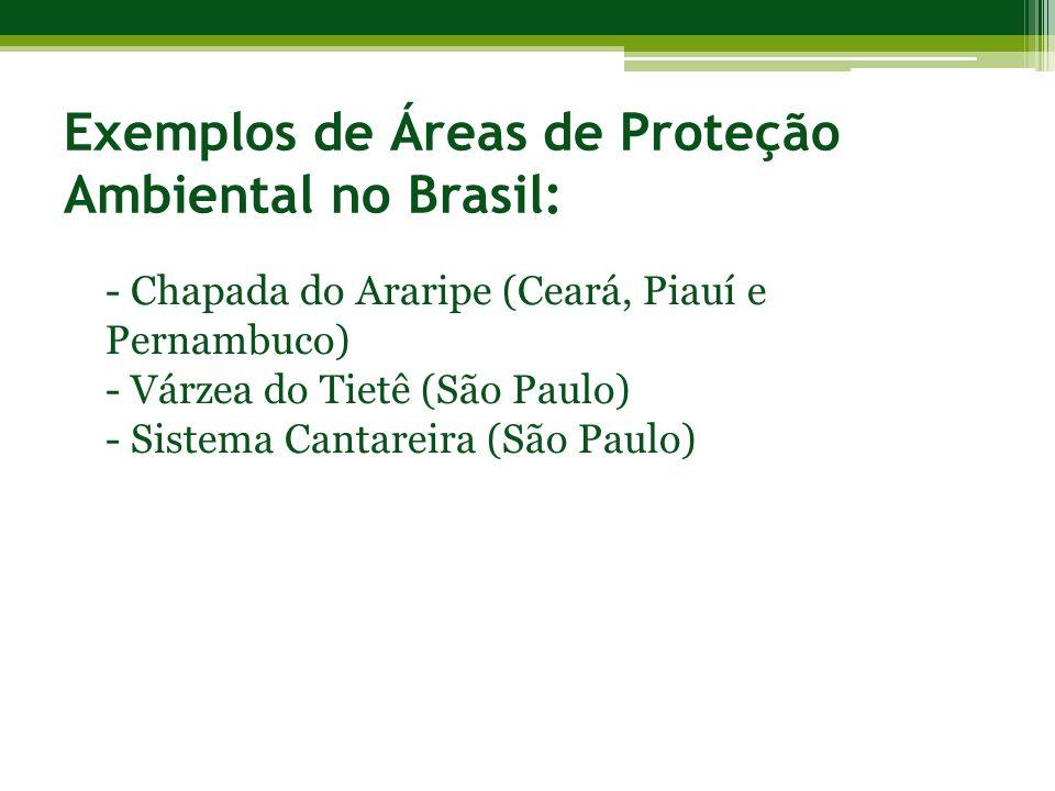 Exemplos de Áreas de Proteção Ambiental no Brasil: - Chapada do Araripe (Ceará, Piauí e Pernambuco) - Várzea do Tietê (São Paulo) - Sistema Cantareira