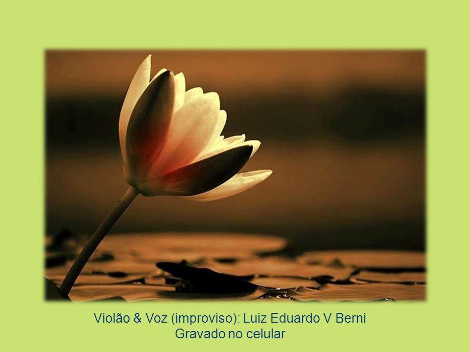 Convite de: Vera Laporta/ Mirian Menezes de Oliveira Colaboração: Lali Jurowsky Comparecimento da Primavera Através dos Membros do CETRANS, primavera