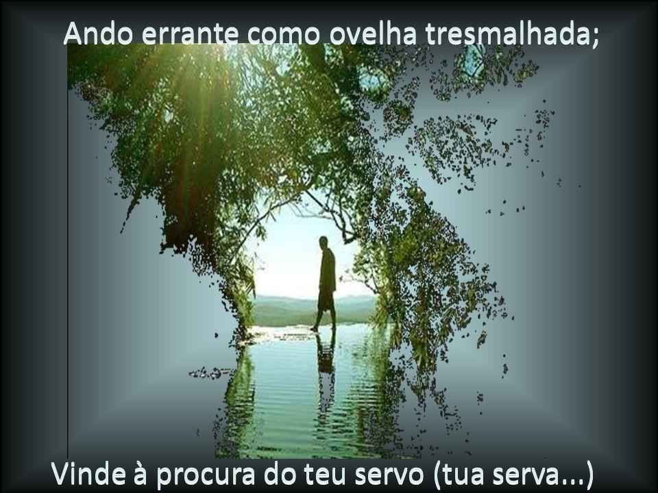 Viva eu sempre para te louvar; que os teus decretos me ajudem.