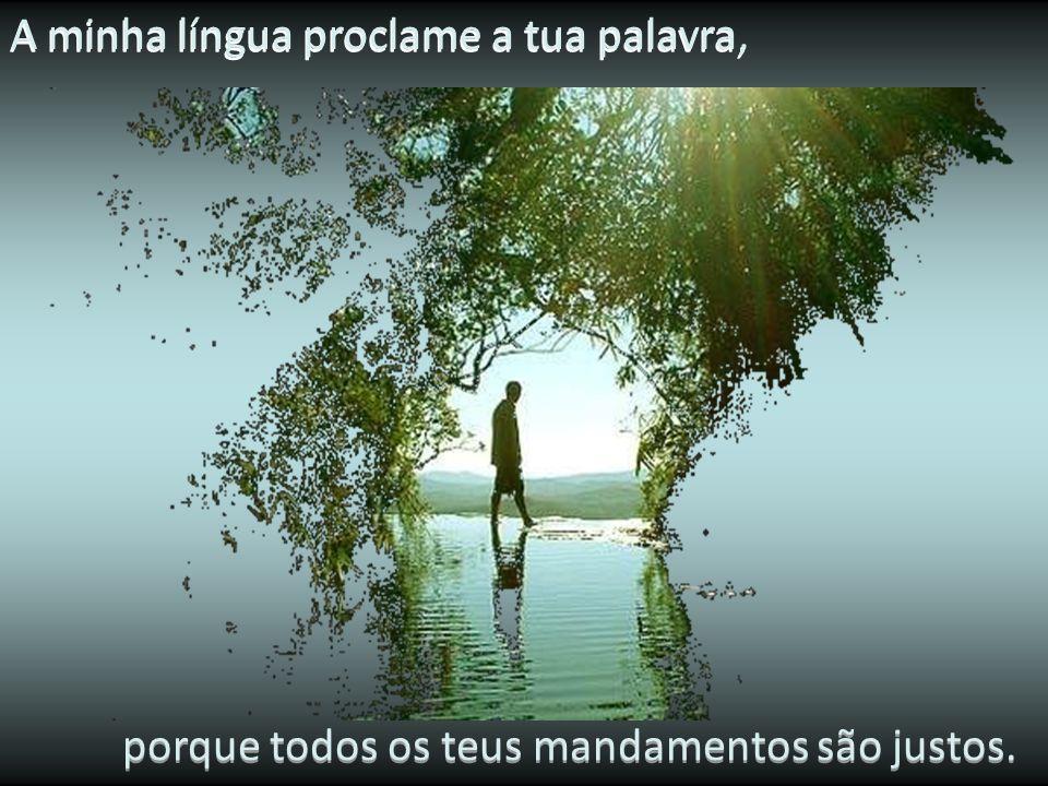Os meus lábios anunciam os teus louvores, porque me ensinas os teus preceitos. porque me ensinas os teus preceitos.