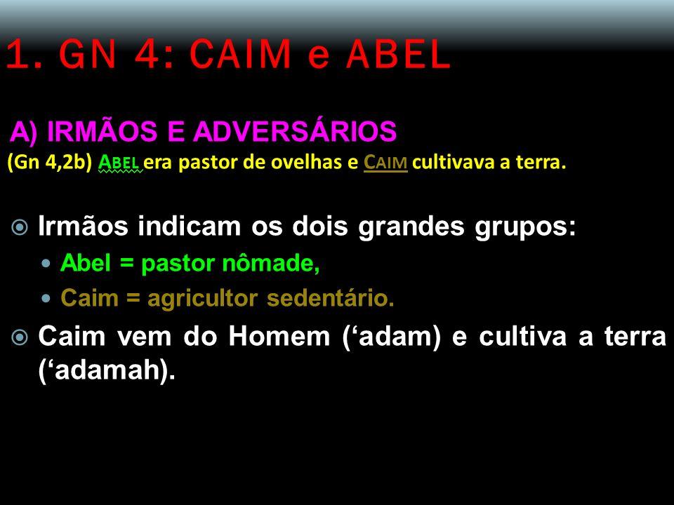 1. GN 4: CAIM e ABEL A) IRMÃOS E ADVERSÁRIOS (Gn 4,2b) A BEL era pastor de ovelhas e C AIM cultivava a terra. Irmãos indicam os dois grandes grupos: A