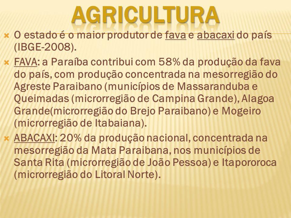 O estado é o maior produtor de fava e abacaxi do país (IBGE-2008). FAVA: a Paraíba contribui com 58% da produção da fava do país, com produção concent