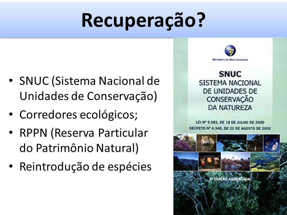 SNUC (Sistema Nacional de Unidades de Conservação) Corredores ecológicos; RPPN (Reserva Particular do Patrimônio Natural) Reintrodução de espécies Recuperação?