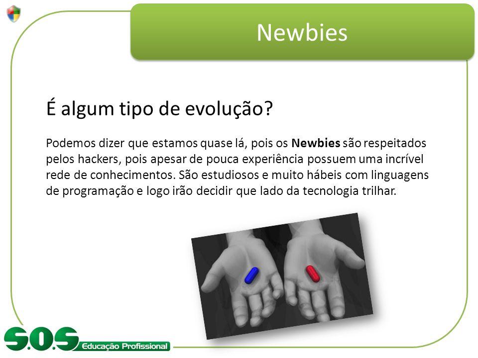 Newbies É algum tipo de evolução? Podemos dizer que estamos quase lá, pois os Newbies são respeitados pelos hackers, pois apesar de pouca experiência