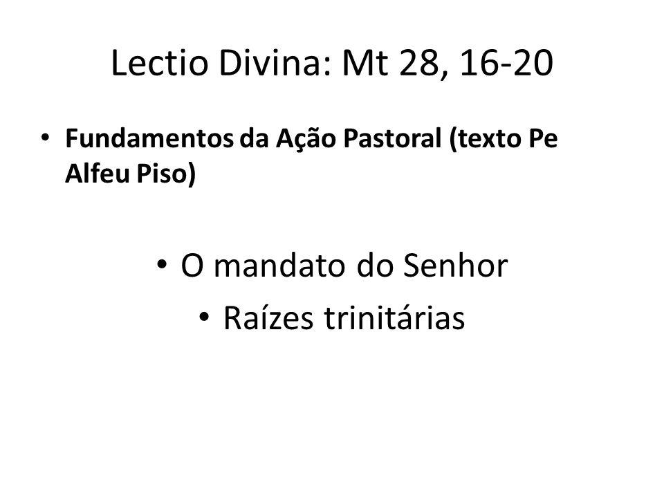 Lectio Divina: Mt 28, 16-20 Fundamentos da Ação Pastoral (texto Pe Alfeu Piso) O mandato do Senhor Raízes trinitárias