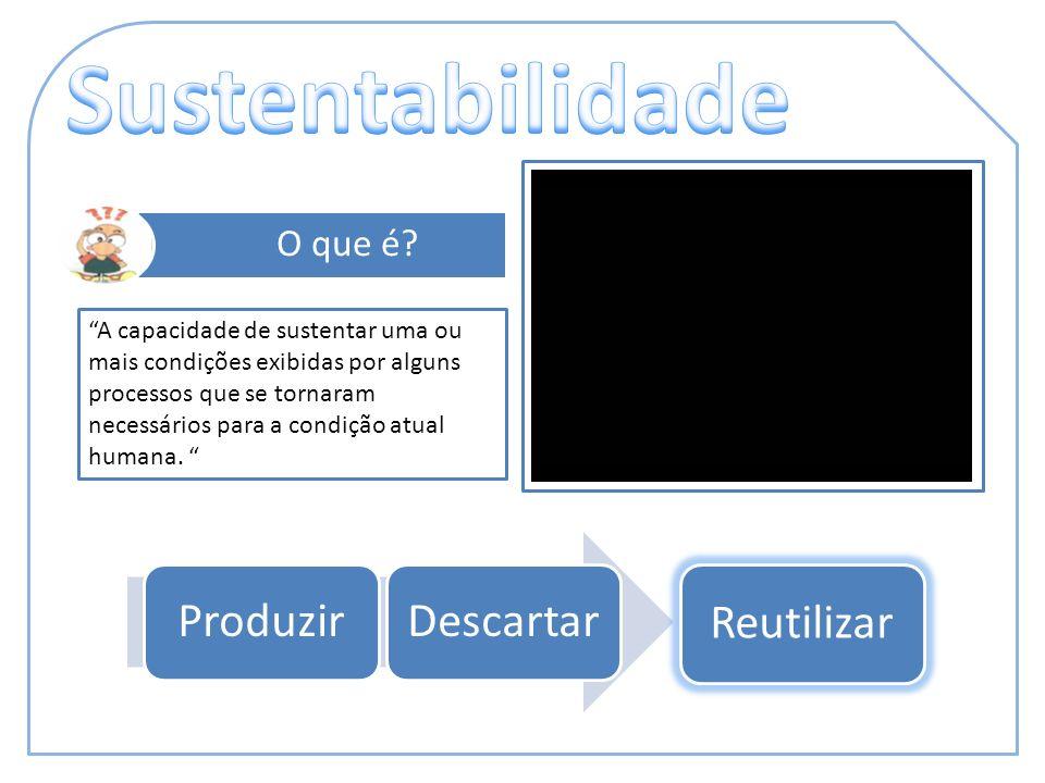 ProduzirDescartar Reutilizar O que é? A capacidade de sustentar uma ou mais condições exibidas por alguns processos que se tornaram necessários para a