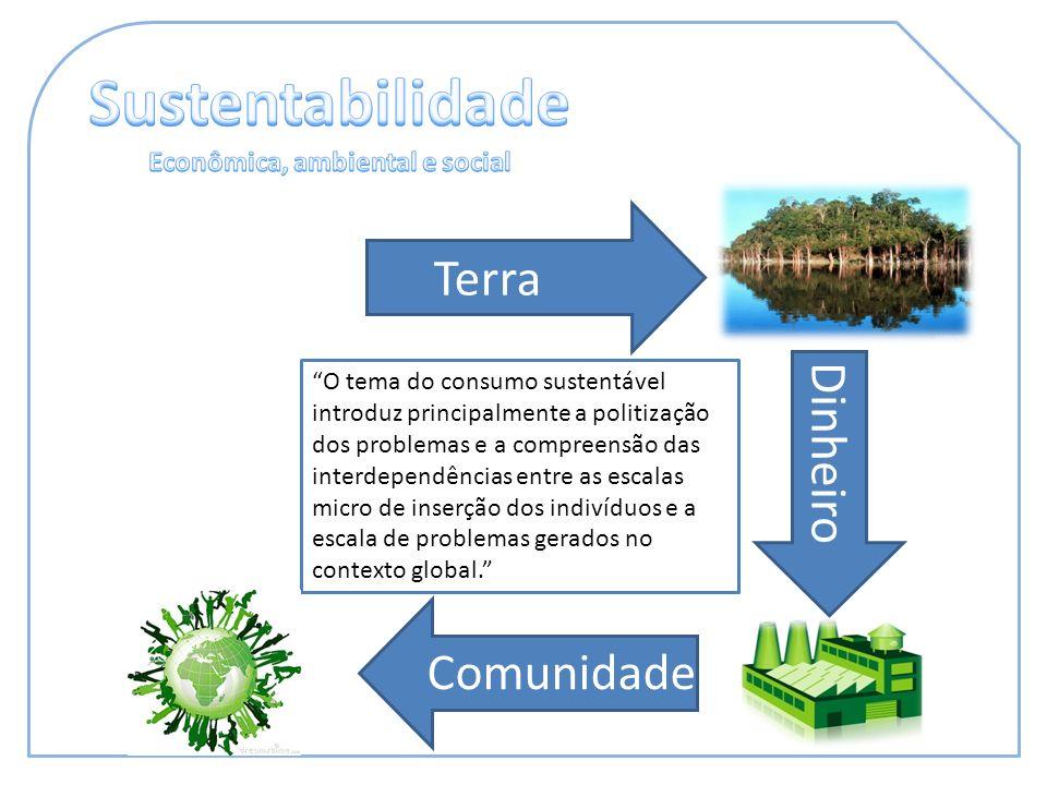 O tema do consumo sustentável introduz principalmente a politização dos problemas e a compreensão das interdependências entre as escalas micro de inserção dos indivíduos e a escala de problemas gerados no contexto global.