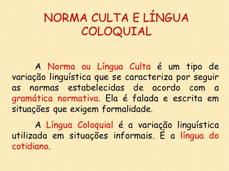 NORMA CULTA E LÍNGUA COLOQUIAL A Norma ou Língua Culta é um tipo de variação linguística que se caracteriza por seguir as normas estabelecidas de acor