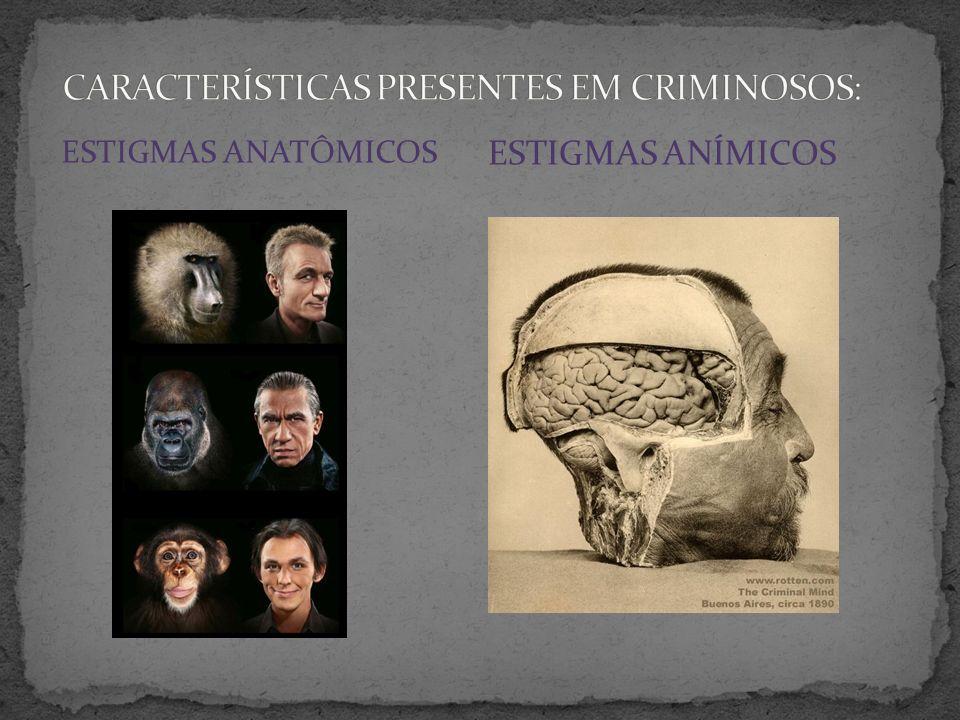 Cinco tipos de criminosos: a) Criminoso nato b) Criminoso louco c) Criminoso de hábito ou profissional d) Criminoso de ocasião ou primário e) Criminoso por paixão OBSERVAÇÕES NOS SEUS ESTUDOS: - Criminalidade inerente à criança - Comportamento criminoso dos animais - Mudança de paradigma: do tipo atávico ao enfermo epiléptico