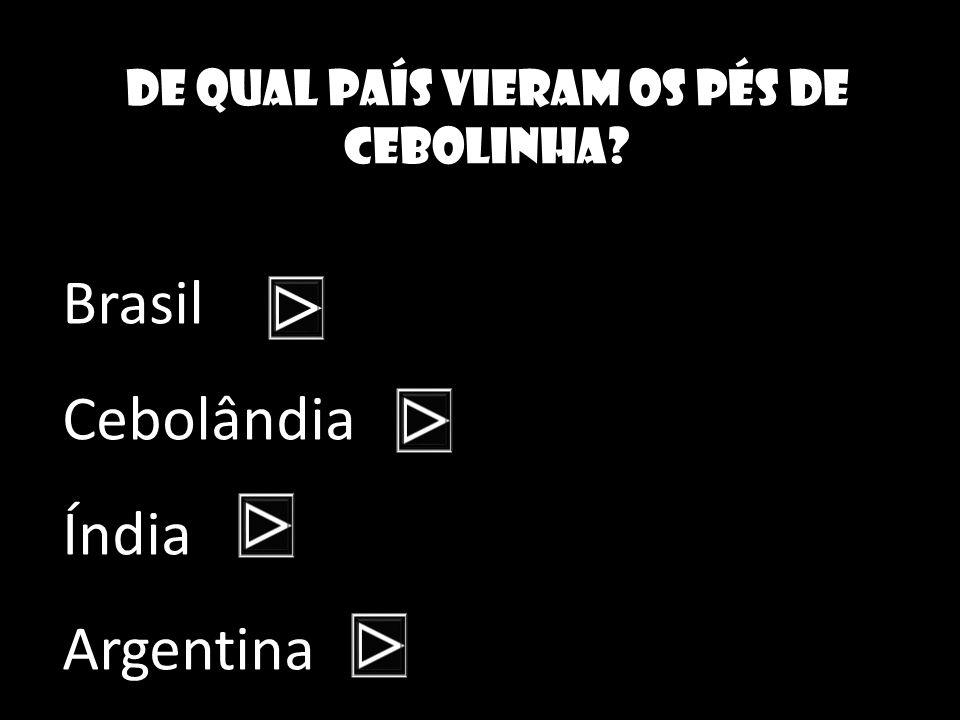 De qual país vieram os pés de cebolinha? Brasil Cebolândia Índia Argentina