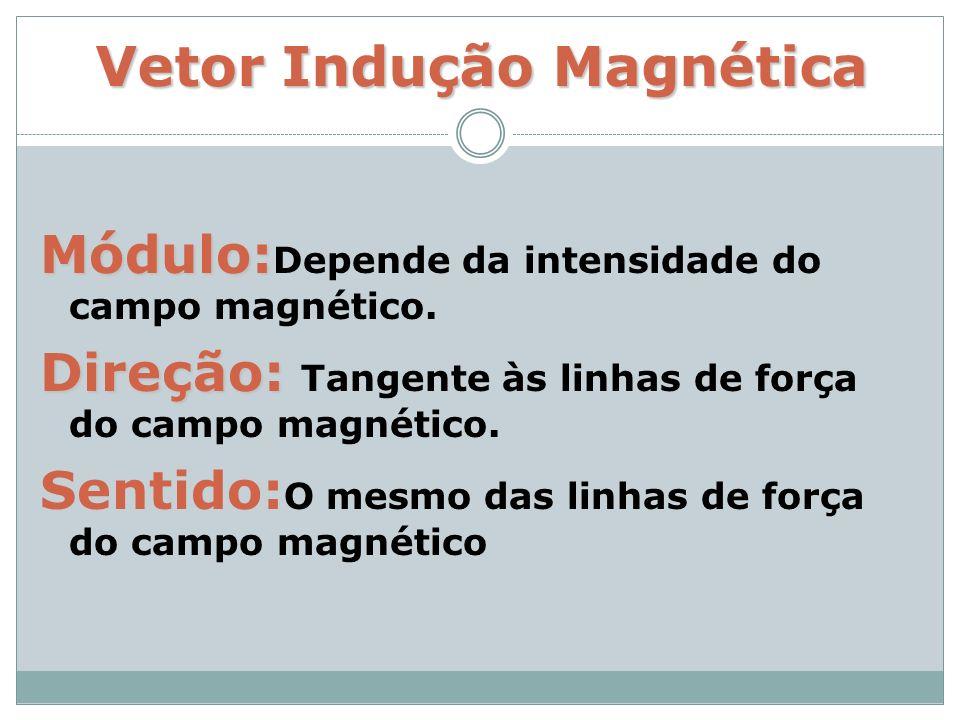 Vetor Indução Magnética Módulo: Módulo: Depende da intensidade do campo magnético. Direção: Direção: Tangente às linhas de força do campo magnético. S