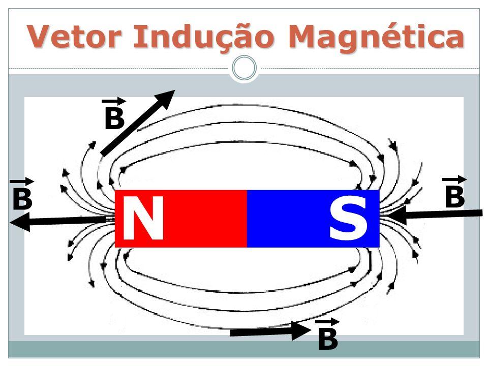 Vetor Indução Magnética NS B B B B