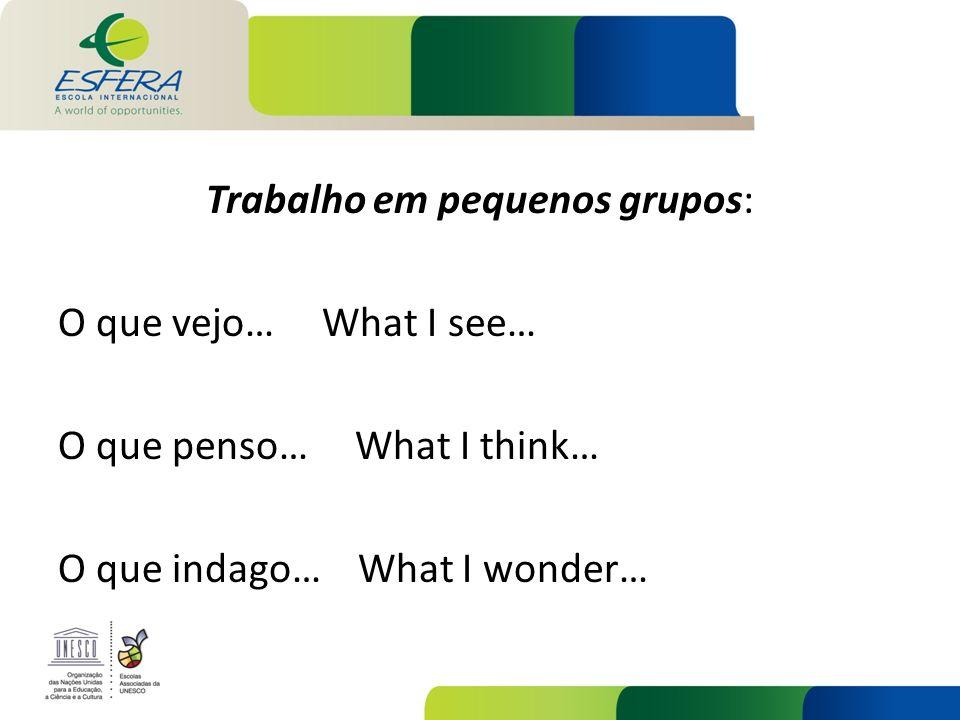 Trabalho em pequenos grupos: O que vejo… What I see… O que penso… What I think… O que indago… What I wonder…