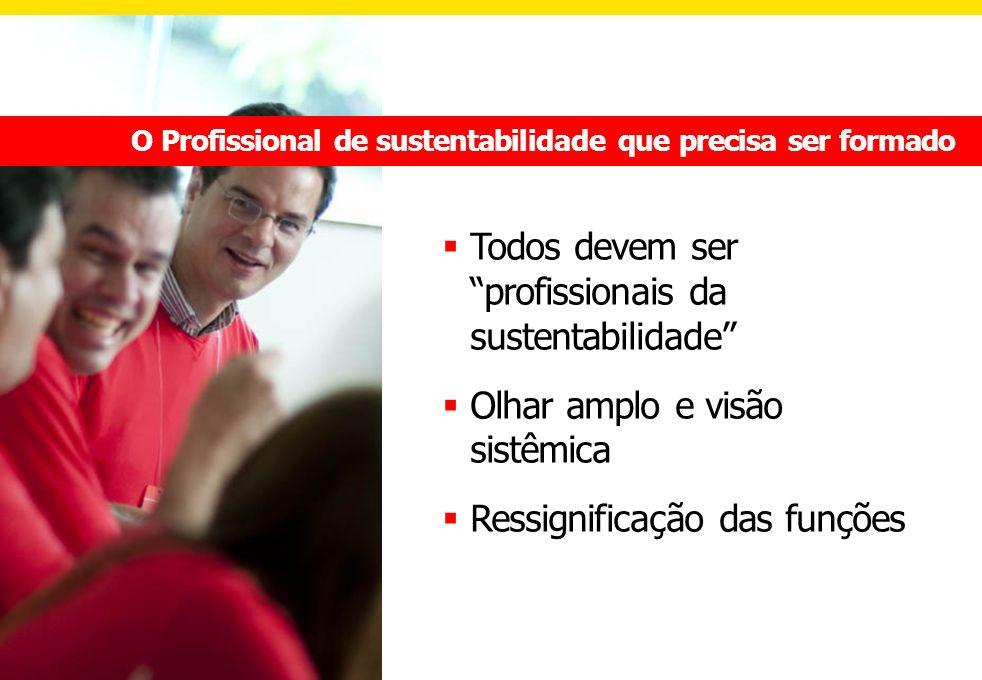 Todos devem ser profissionais da sustentabilidade Olhar amplo e visão sistêmica Ressignificação das funções O Profissional de sustentabilidade que pre