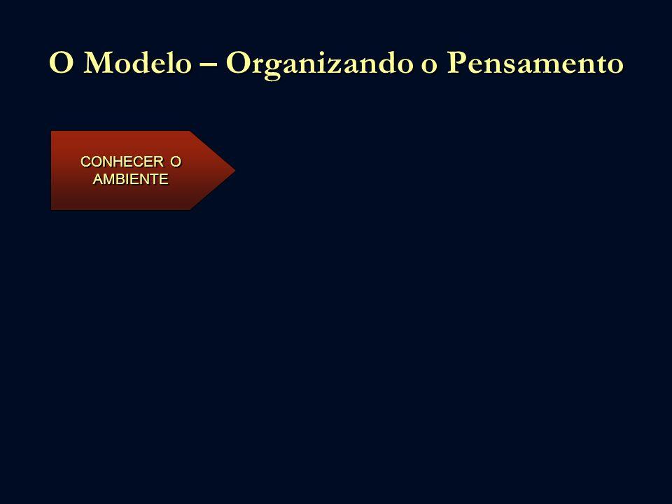 O Modelo – Organizando o Pensamento CONHECER O AMBIENTE