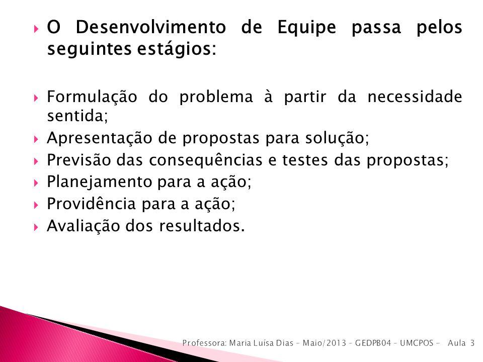 O Desenvolvimento de Equipe passa pelos seguintes estágios: Formulação do problema à partir da necessidade sentida; Apresentação de propostas para sol