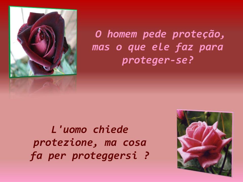 O homem pede proteção, mas o que ele faz para proteger-se.