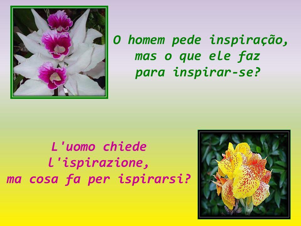 O homem pede inspiração, mas o que ele faz para inspirar-se.