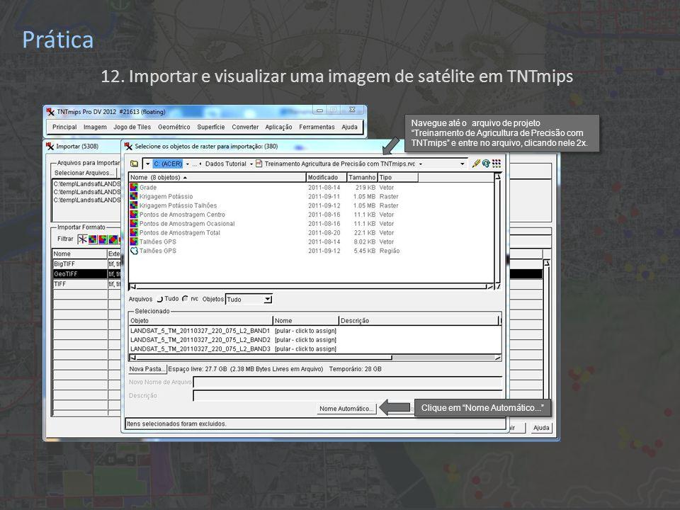 12. Importar e visualizar uma imagem de satélite em TNTmips Prática Clique em Nome Automático...