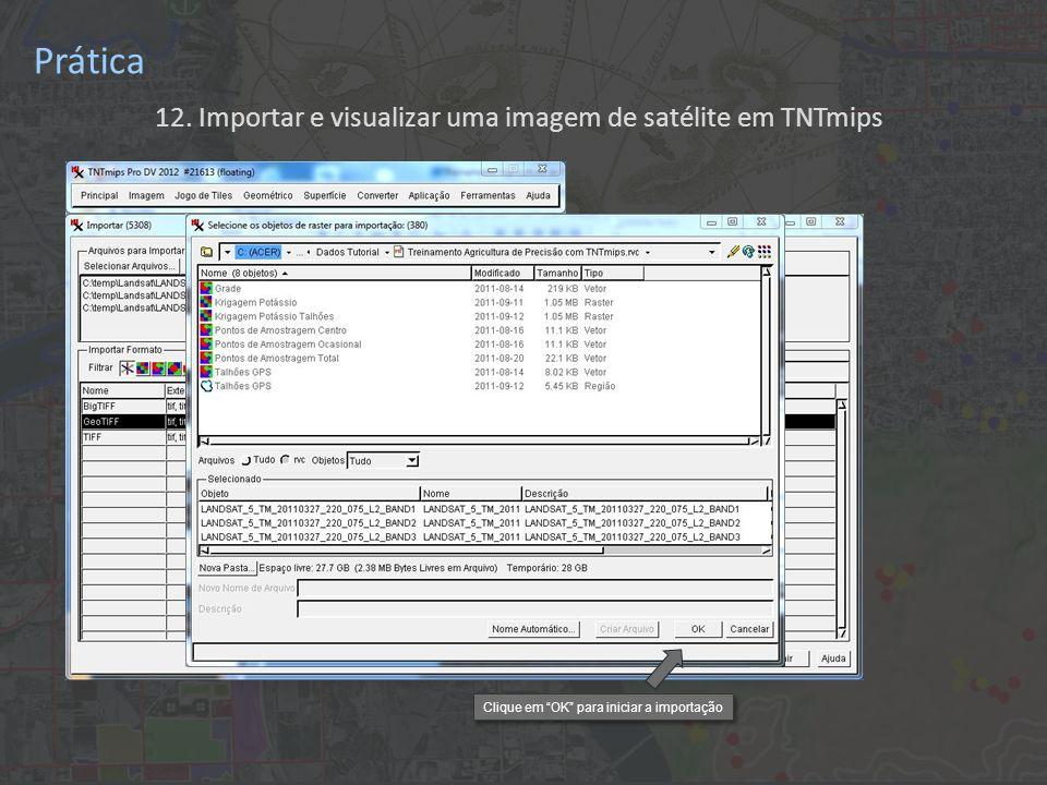 12. Importar e visualizar uma imagem de satélite em TNTmips Prática Clique em OK para iniciar a importação