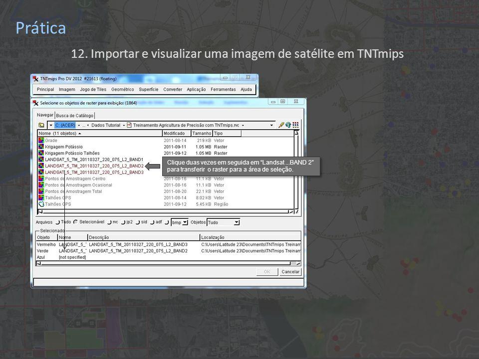 12. Importar e visualizar uma imagem de satélite em TNTmips Prática Clique duas vezes em seguida em Landsat...BAND 2 para transferir o raster para a á