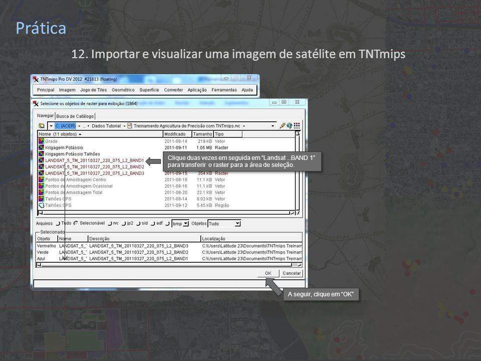 12. Importar e visualizar uma imagem de satélite em TNTmips Prática Clique duas vezes em seguida em Landsat...BAND 1 para transferir o raster para a á
