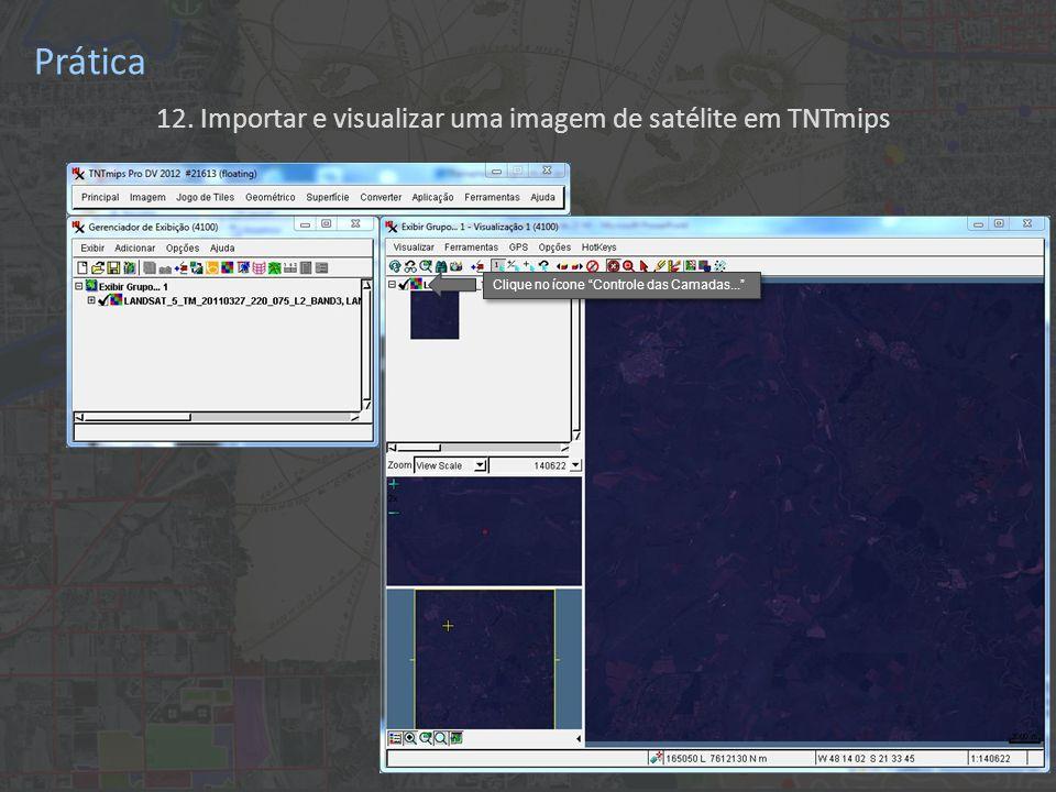 12. Importar e visualizar uma imagem de satélite em TNTmips Prática Clique no ícone Controle das Camadas...