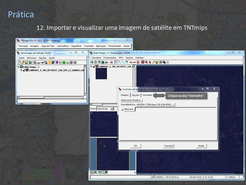 12. Importar e visualizar uma imagem de satélite em TNTmips Prática Clique na aba Vermelho