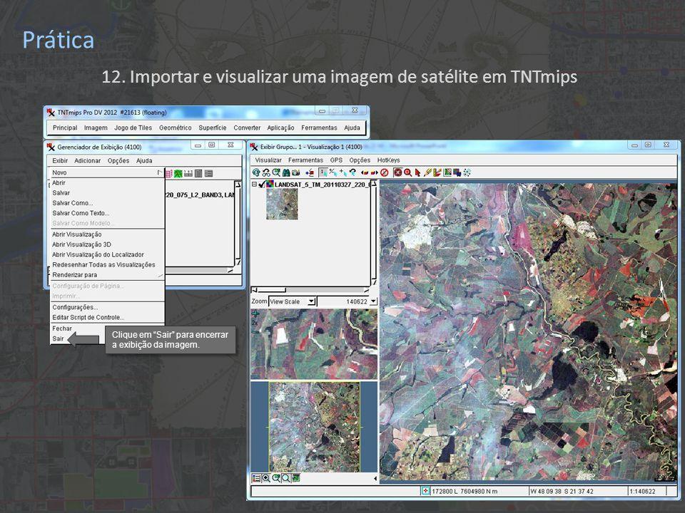 12. Importar e visualizar uma imagem de satélite em TNTmips Prática Clique em Sair para encerrar a exibição da imagem. Clique em Sair para encerrar a
