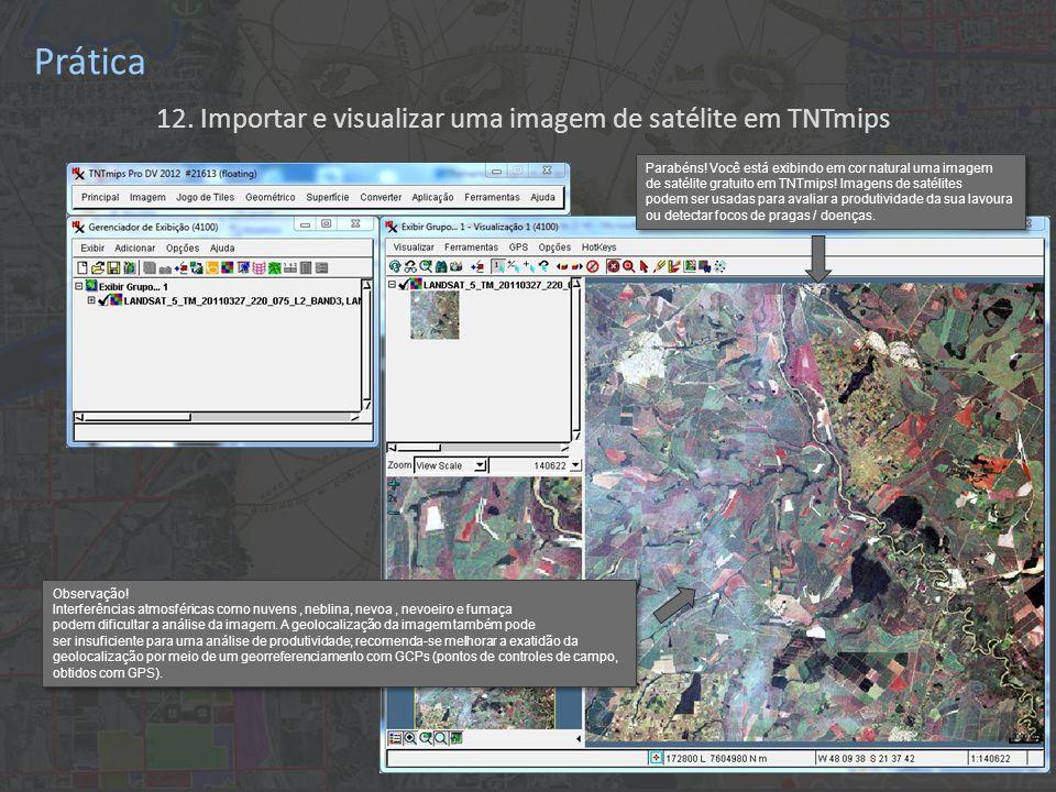12. Importar e visualizar uma imagem de satélite em TNTmips Prática Parabéns.
