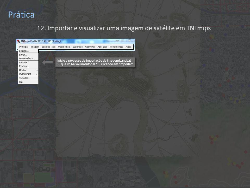 Inicie o processo de importação da imagem Landsat 5, que vc baixou no tutorial 10, clicando em Importar Prática 12.
