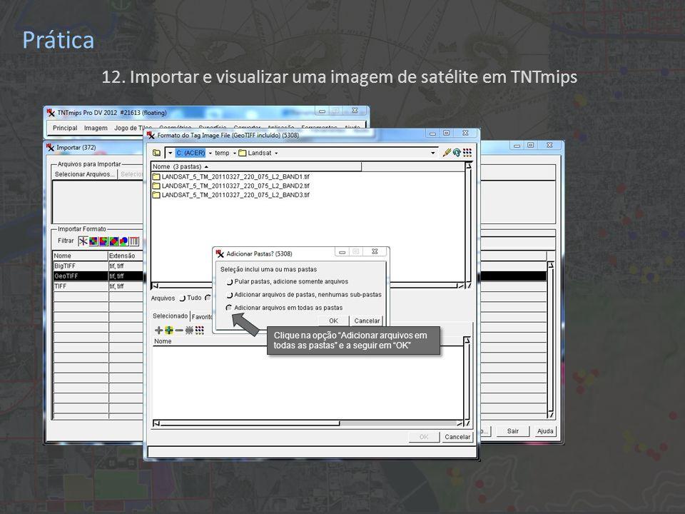 12. Importar e visualizar uma imagem de satélite em TNTmips Prática Clique na opção Adicionar arquivos em todas as pastas e a seguir em OK Clique na o