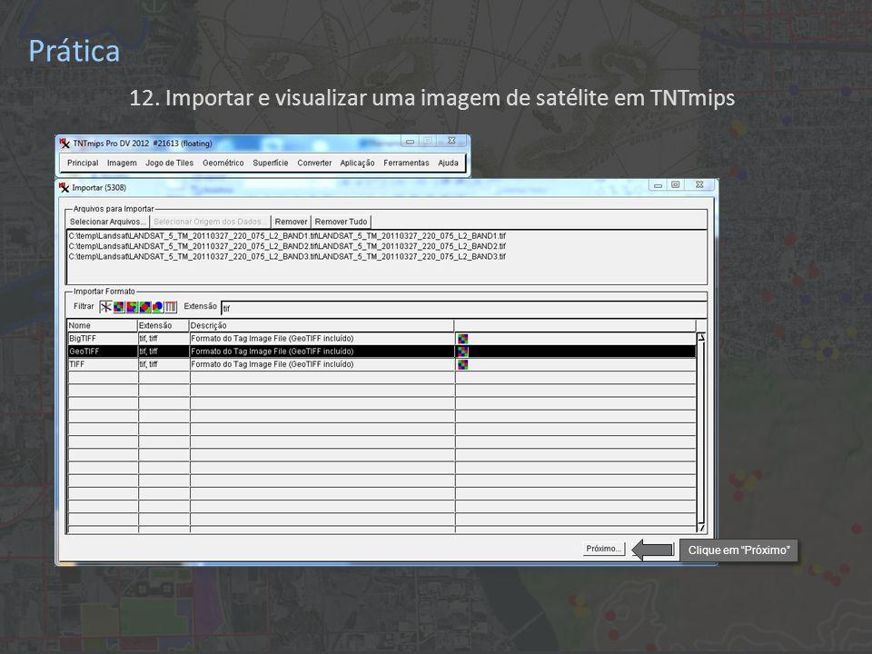 12. Importar e visualizar uma imagem de satélite em TNTmips Prática Clique em Próximo